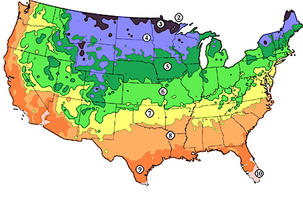 Hardy Zone Tool | Utah is Zones 4-8 | Willowcreek Tree Farms