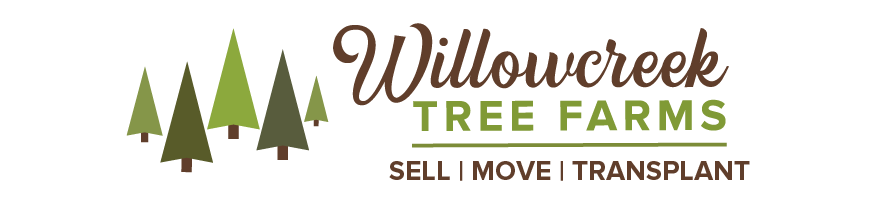 Willowcreek Tree Farms